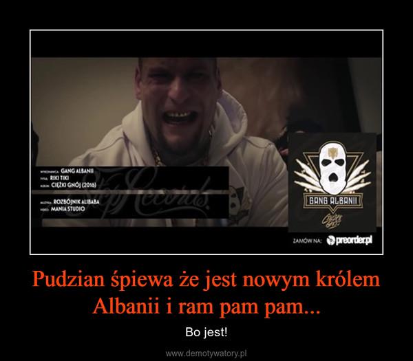 Pudzian śpiewa że jest nowym królem Albanii i ram pam pam... – Bo jest!