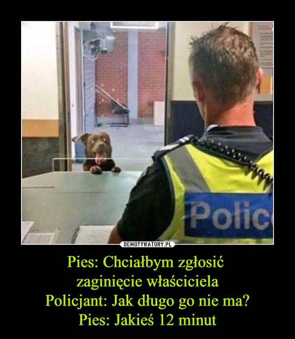 Pies: Chciałbym zgłosić zaginięcie właścicielaPolicjant: Jak długo go nie ma?Pies: Jakieś 12 minut –