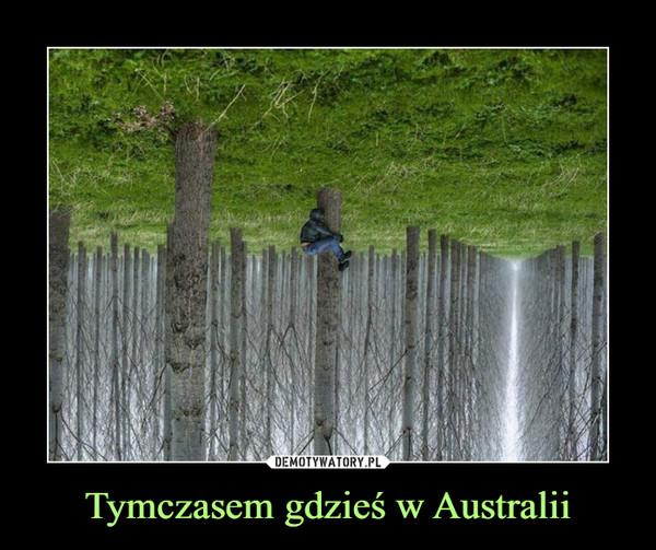 Tymczasem gdzieś w Australii –