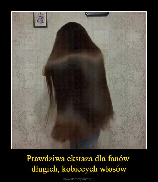 Prawdziwa ekstaza dla fanów długich, kobiecych włosów –