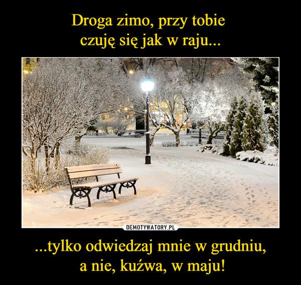 ...tylko odwiedzaj mnie w grudniu, a nie, kuźwa, w maju! –
