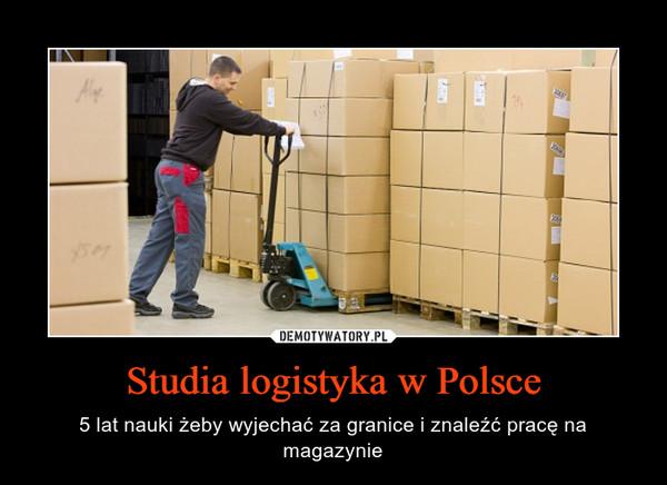 Studia logistyka w Polsce – 5 lat nauki żeby wyjechać za granice i znaleźć pracę na magazynie
