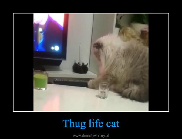 Thug life cat –
