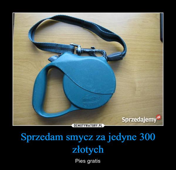 Sprzedam smycz za jedyne 300 złotych – Pies gratis