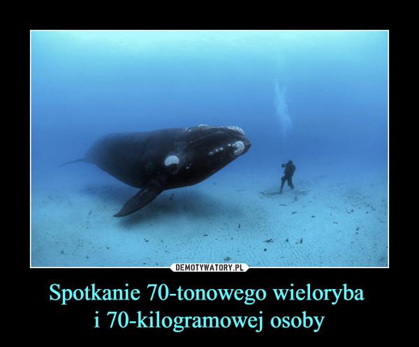 Spotkanie 70-tonowego wieloryba i 70-kilogramowej osoby –