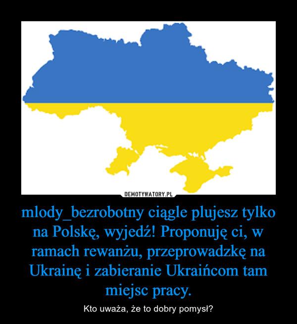 mlody_bezrobotny ciągle plujesz tylko na Polskę, wyjedź! Proponuję ci, w ramach rewanżu, przeprowadzkę na Ukrainę i zabieranie Ukraińcom tam miejsc pracy. – Kto uważa, że to dobry pomysł?