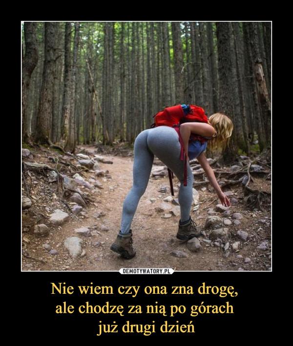 Nie wiem czy ona zna drogę, ale chodzę za nią po górach już drugi dzień –