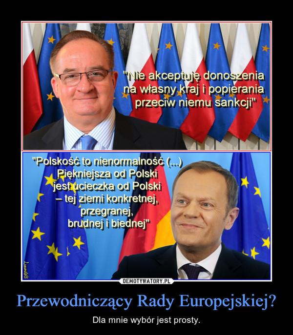 Przewodniczący Rady Europejskiej? – Dla mnie wybór jest prosty.