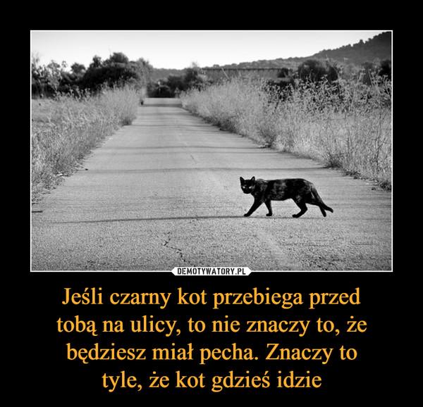 Jeśli czarny kot przebiega przedtobą na ulicy, to nie znaczy to, żebędziesz miał pecha. Znaczy totyle, że kot gdzieś idzie –