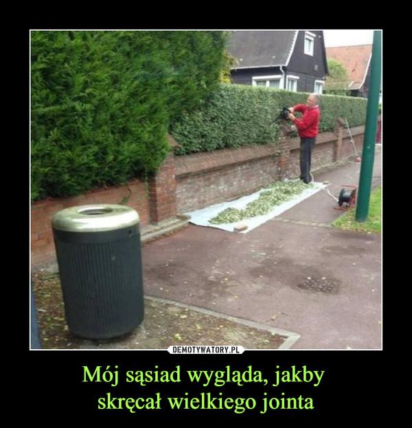 Mój sąsiad wygląda, jakby skręcał wielkiego jointa –