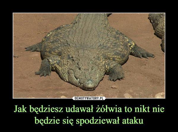 Jak będziesz udawał żółwia to nikt nie będzie się spodziewał ataku –