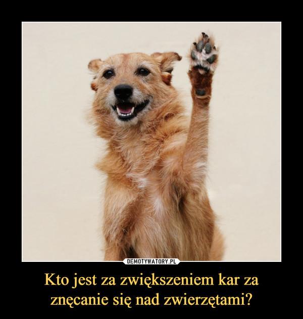Kto jest za zwiększeniem kar za znęcanie się nad zwierzętami? –