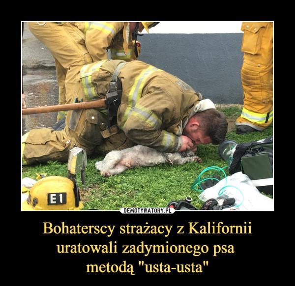"""Bohaterscy strażacy z Kalifornii uratowali zadymionego psa metodą """"usta-usta"""" –"""
