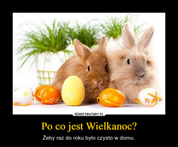 Po co jest Wielkanoc? – Żeby raz do roku było czysto w domu.