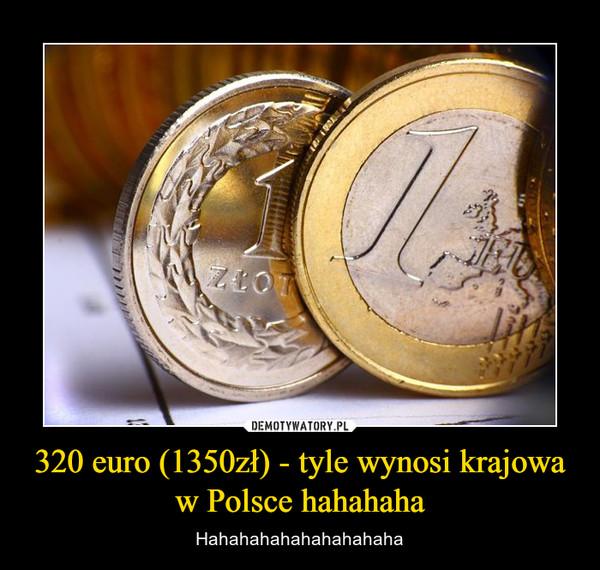 320 euro (1350zł) - tyle wynosi krajowa w Polsce hahahaha – Hahahahahahahahahaha