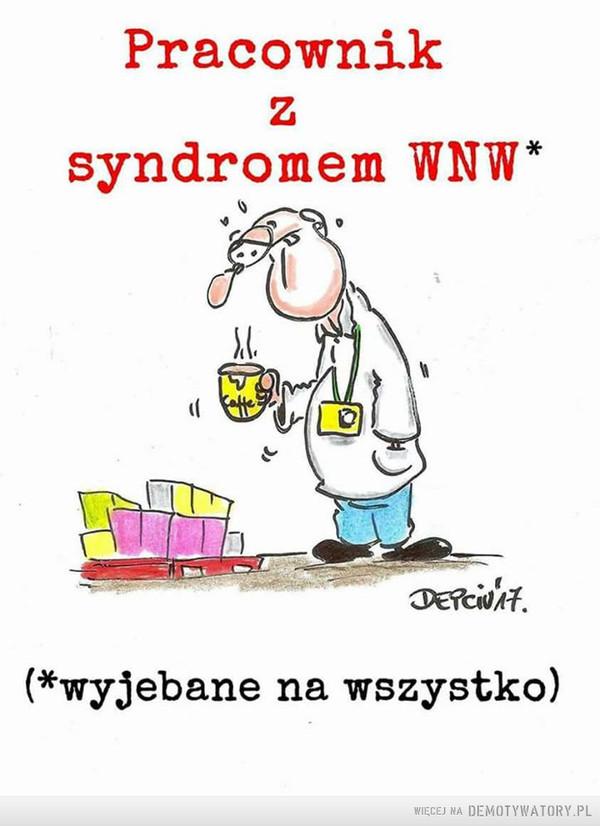 Syndrom WNW –  Pracownik z syndromem WNW*Wyjebane na wszystko