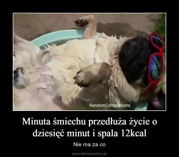 Minuta śmiechu przedłuża życie o dziesięć minut i spala 12kcal – Nie ma za co