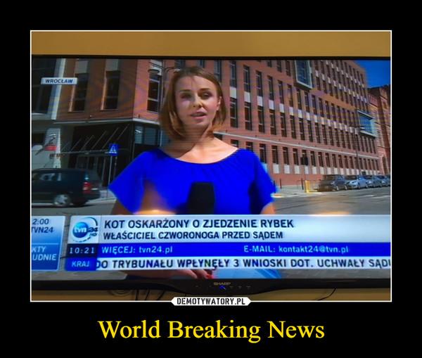 World Breaking News –  KOT OSKARŻONY O ZJEDZENIE RYBEK. WŁAŚCICIEL CZWORONOGA PRZED SĄDEM