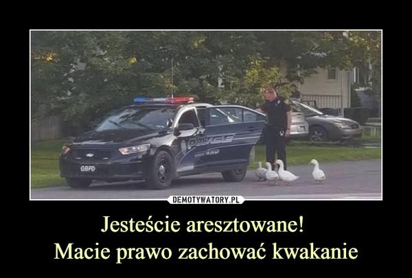 Jesteście aresztowane! Macie prawo zachować kwakanie –