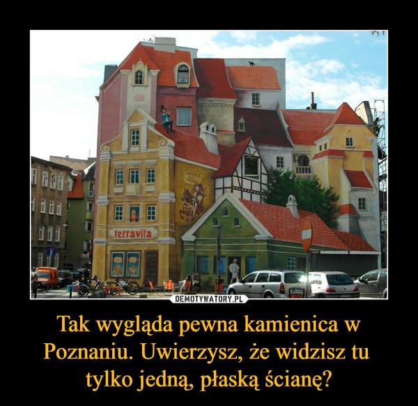 Tak wygląda pewna kamienica w Poznaniu. Uwierzysz, że widzisz tu tylko jedną, płaską ścianę? –