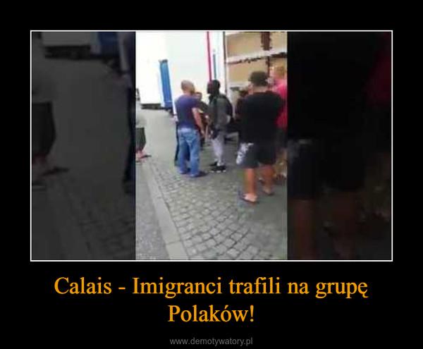 Calais - Imigranci trafili na grupę Polaków! –