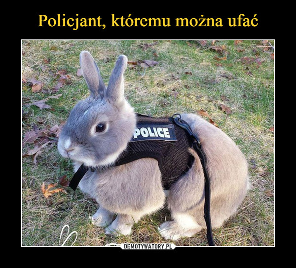 –  police