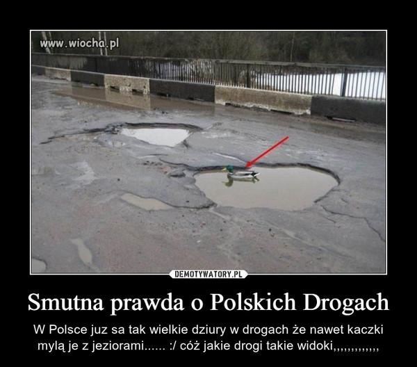 Smutna prawda o Polskich Drogach – W Polsce juz sa tak wielkie dziury w drogach że nawet kaczki mylą je z jeziorami...... :/ cóż jakie drogi takie widoki,,,,,,,,,,,,,