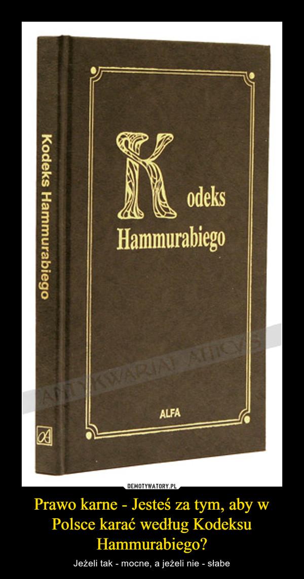 Prawo karne - Jesteś za tym, aby w Polsce karać według Kodeksu Hammurabiego? – Jeżeli tak - mocne, a jeżeli nie - słabe
