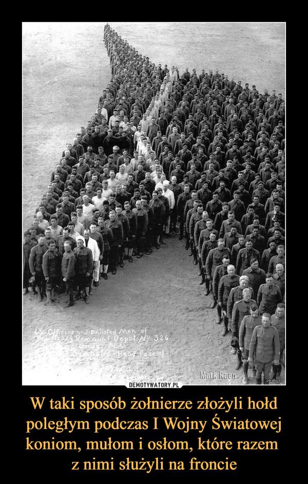 W taki sposób żołnierze złożyli hołd poległym podczas I Wojny Światowej koniom, mułom i osłom, które razem z nimi służyli na froncie –