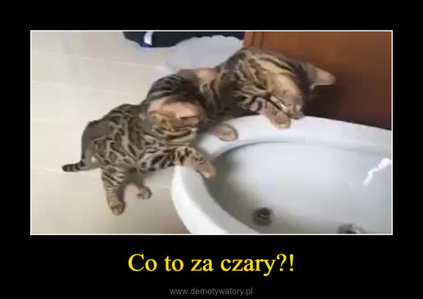 Co to za czary?! –