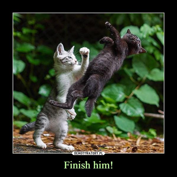 Finish him! –