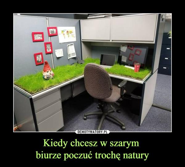 Kiedy chcesz w szarym biurze poczuć trochę natury –