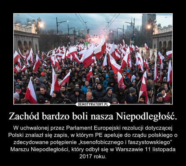 """Zachód bardzo boli nasza Niepodległość. – W uchwalonej przez Parlament Europejski rezolucji dotyczącej Polski znalazł się zapis, w którym PE apeluje do rządu polskiego o zdecydowane potępienie """"ksenofobicznego i faszystowskiego"""" Marszu Niepodległości, który odbył się w Warszawie 11 listopada 2017 roku."""