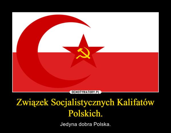Związek Socjalistycznych Kalifatów Polskich. – Jedyna dobra Polska.