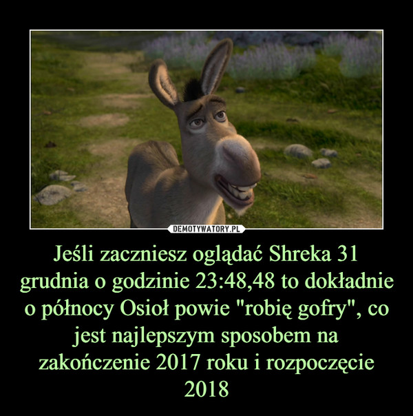 """Jeśli zaczniesz oglądać Shreka 31 grudnia o godzinie 23:48,48 to dokładnie o północy Osioł powie """"robię gofry"""", co jest najlepszym sposobem na zakończenie 2017 roku i rozpoczęcie 2018 –"""