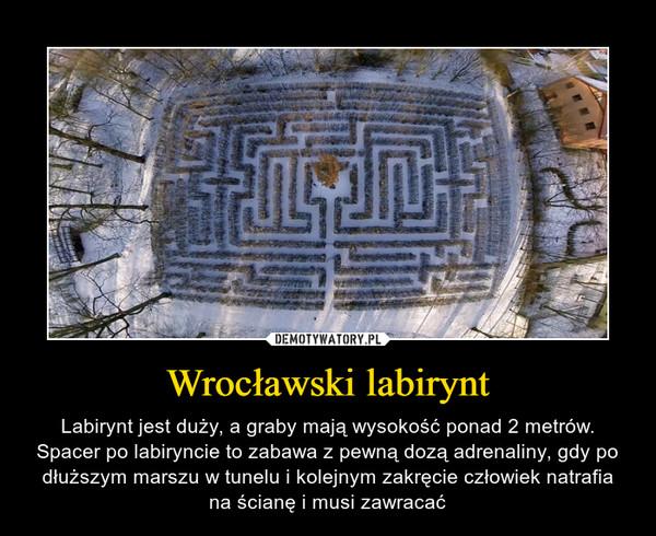 Wrocławski labirynt – Labirynt jest duży, a graby mają wysokość ponad 2 metrów. Spacer po labiryncie to zabawa z pewną dozą adrenaliny, gdy po dłuższym marszu w tunelu i kolejnym zakręcie człowiek natrafia na ścianę i musi zawracać