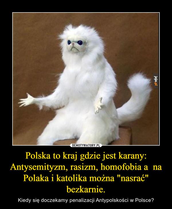 """Polska to kraj gdzie jest karany: Antysemityzm, rasizm, homofobia a  na Polaka i katolika można """"nasrać"""" bezkarnie. – Kiedy się doczekamy penalizacji Antypolskości w Polsce?"""
