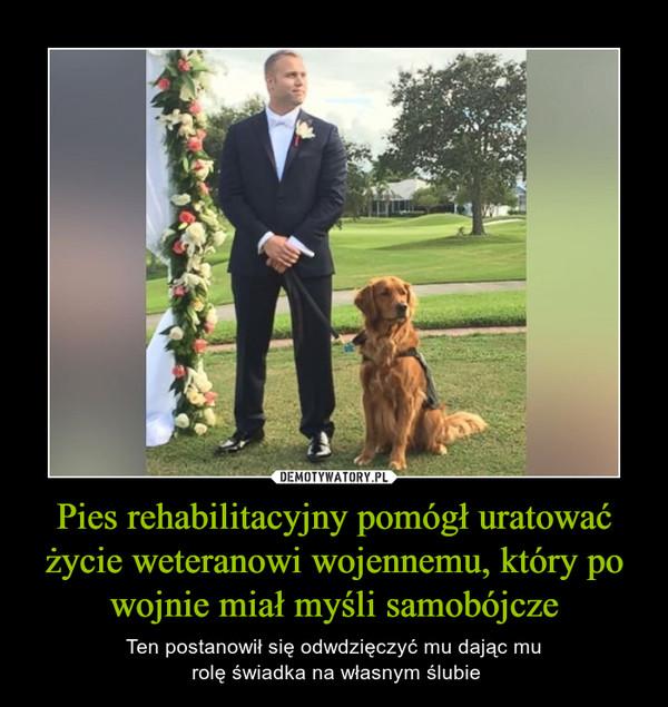 Pies rehabilitacyjny pomógł uratować życie weteranowi wojennemu, który po wojnie miał myśli samobójcze – Ten postanowił się odwdzięczyć mu dając mu rolę świadka na własnym ślubie