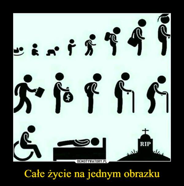Całe życie na jednym obrazku –