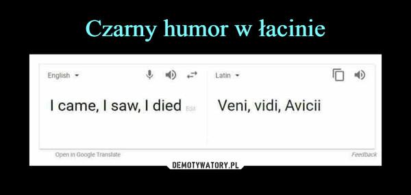 –  I came, I saw, I diedVeni, vidi, Avicii