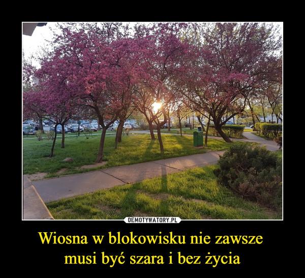 Wiosna w blokowisku nie zawsze musi być szara i bez życia –