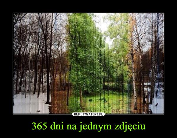 365 dni na jednym zdjęciu –