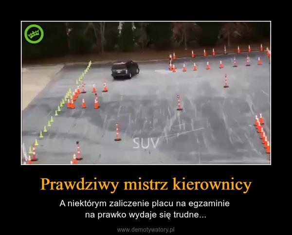 Prawdziwy mistrz kierownicy – A niektórym zaliczenie placu na egzaminie na prawko wydaje się trudne...