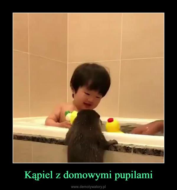 Kąpiel z domowymi pupilami –