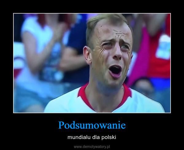 Podsumowanie – mundialu dla polski