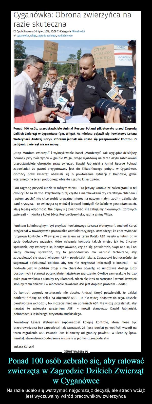 """Ponad 100 osób zebrało się, aby ratować zwierzęta w Zagrodzie Dzikich Zwierząt w Cyganówce – Na razie udało się wstrzymać najgorszą z decyzji, ale strach wciąż jest wyczuwalny wśród pracowników zwierzyńca Ponad 100 osób, przedstawiciele Animal Rescue Poland pikietowało przed Zagrodą Dzikich Zwierząt w Cyganówce (gm. Wilga). Na miejscu pojawił się Powiatowy Lekarz Weterynarii Andrzej Koryś, któremu jednak nie udało się przeprowadzić kontroli. O zabijaniu zwierząt nie ma mowy.""""Stop Mordom zwierząt!"""" i wykrzykiwanie haseł """"Mordercy!"""". Tak wyglądał dzisiejszy poranek przy zwierzyńcu w gminie Wilga. Drogę wjazdową na teren azylu zablokowali przedstawiciele obrońców praw zwierząt. Dawid Fabjański z Animl Rescue Polnad zapowiadał, że patrol przygotowany jest do kilkudniowego pobytu w Cyganówce. Obrońcy praw zwierząt obawiali się o powtórzenie sytuacji z Hajnówki, gdzie wtargnięto na teren podobnego obiektu i zabito kilka dzików.Pod zagrodę przyszli ludzie w różnym wieku. - To jedyny kontakt ze zwierzętami w tej okolicy i to za darmo. Przychodzę tutaj często z marchewkami czy czerstwym chlebem i raptem """"pach!"""". Kto chce zrobić prywatny interes na naszym małym zoo? – dziwiła się pani Krystyna. - Te zwierzęta są w dużej lepszej kondycji niż świnie w gospodarstwach. Mają lepszą odporność. Nie dajmy się zwariować. Nie zabijajmy niewinnych i zdrowych zwierząt! -  mówiła z kolei Edyta Rosłon-Szeryńska, radna gminy Wilga.Punktem kulminacyjnym był przyjazd Powiatowego Lekarza Weterynarii. Andrzej Koryś przyjechał w towarzystwie pracownika administracyjnego. Oświadczył, że chce wykonać rutynową kontrolę. - W związku z wejściem na teren Polski ASF, weszły w lutym br. w życie dodatkowe przepisy, które nakazują kontrole takich miejsc jak to. Chcemy sprawdzić, czy zwierzęta są identyfikowalne, czy da się potwierdzić, skąd one są i od kiedy. Chcemy sprawdzić, czy to gospodarstwo ma warunki techniczne, aby zabezpieczyć się przed wirusem ASF – powiedział lekarz. Zaprzeczył jednocześnie, że"""