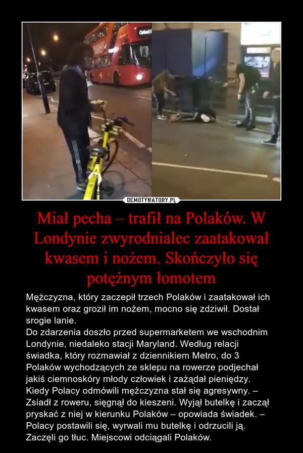 Miał pecha – trafił na Polaków. W Londynie zwyrodnialec zaatakował kwasem i nożem. Skończyło się potężnym łomotem – Mężczyzna, który zaczepił trzech Polaków i zaatakował ich kwasem oraz groził im nożem, mocno się zdziwił. Dostał srogie lanie.Do zdarzenia doszło przed supermarketem we wschodnim Londynie, niedaleko stacji Maryland. Według relacji świadka, który rozmawiał z dziennikiem Metro, do 3 Polaków wychodzących ze sklepu na rowerze podjechał jakiś ciemnoskóry młody człowiek i zażądał pieniędzy. Kiedy Polacy odmówili mężczyzna stał się agresywny. – Zsiadł z roweru, sięgnął do kieszeni. Wyjął butelkę i zaczął pryskać z niej w kierunku Polaków – opowiada świadek. – Polacy postawili się, wyrwali mu butelkę i odrzucili ją. Zaczęli go tłuc. Miejscowi odciągali Polaków.