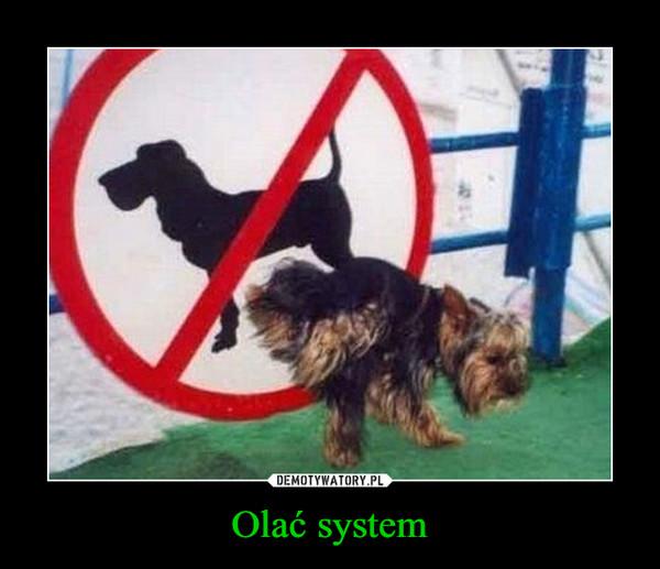 Olać system –