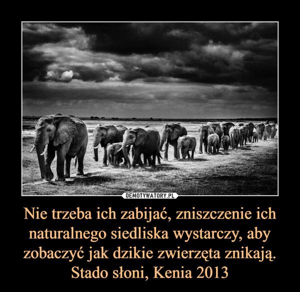 Nie trzeba ich zabijać, zniszczenie ich naturalnego siedliska wystarczy, aby zobaczyć jak dzikie zwierzęta znikają. Stado słoni, Kenia 2013 –