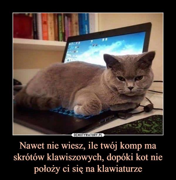 Nawet nie wiesz, ile twój komp ma skrótów klawiszowych, dopóki kot nie położy ci się na klawiaturze –